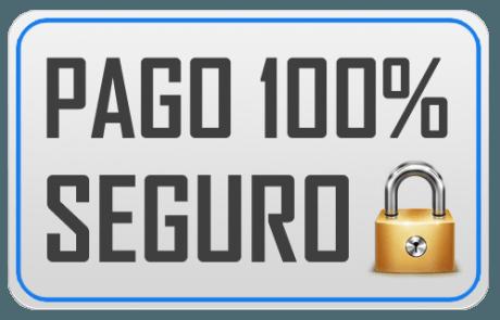 pago_seguro_100